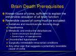 brain death prerequisites