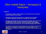 other related topics honeypots honeynets
