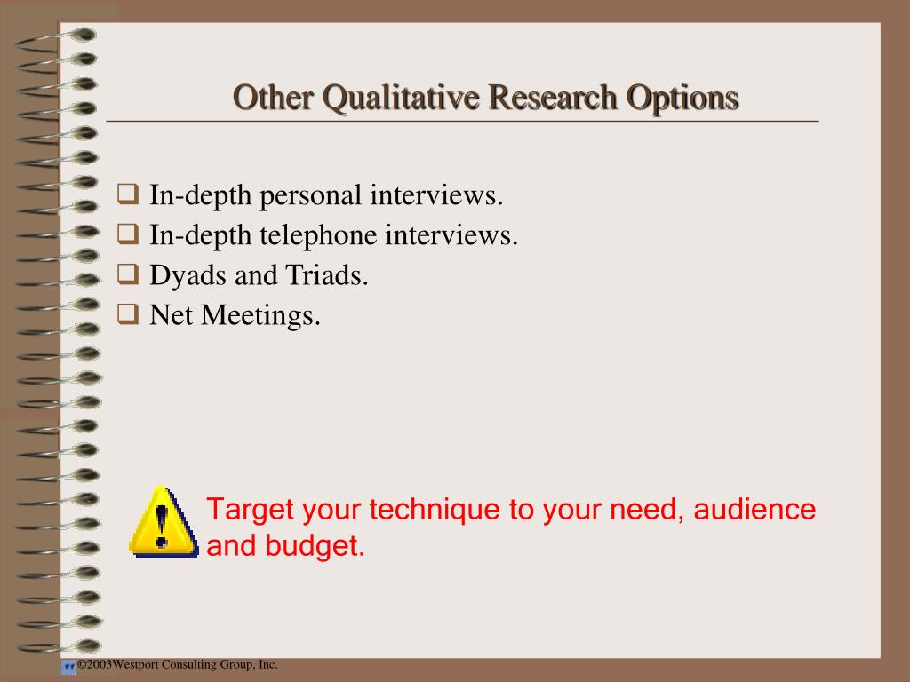 Other Qualitative Research Options