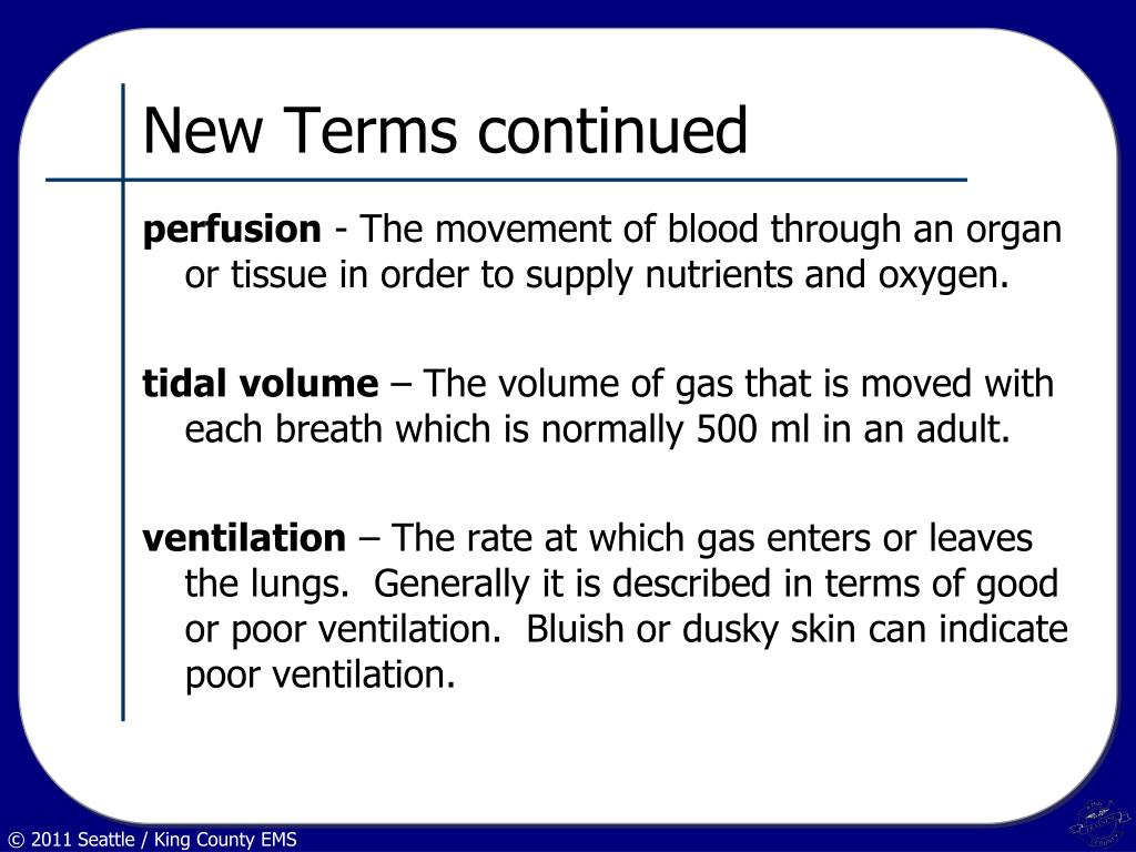 New Terms continued