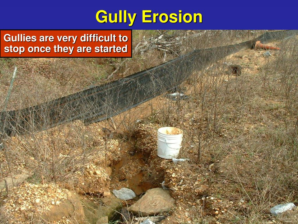 Gully Erosion