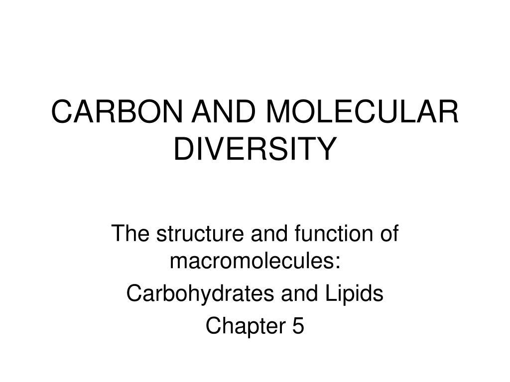 CARBON AND MOLECULAR DIVERSITY
