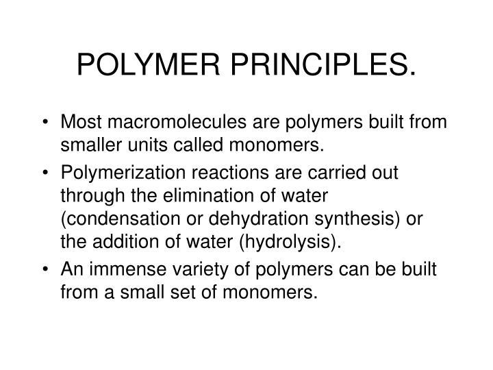 Polymer principles