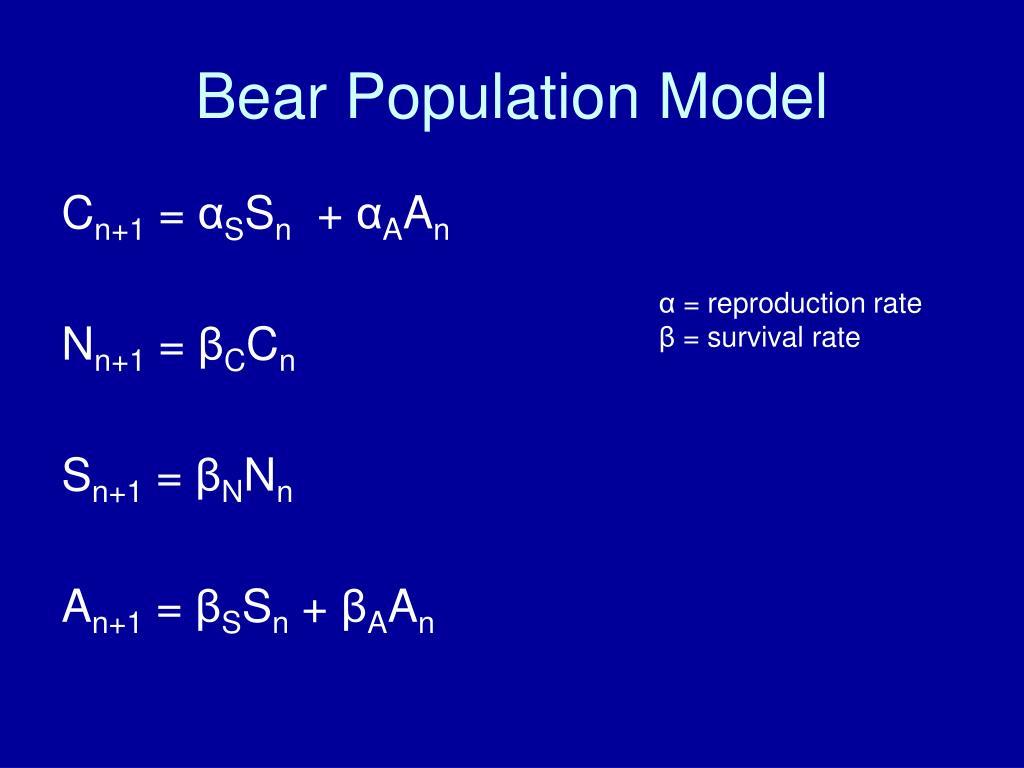 Bear Population Model