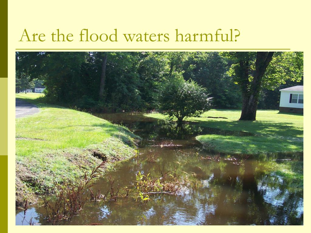 Are the flood waters harmful?
