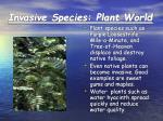 invasive species plant world