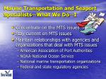 marine transportation and seaport specialists what we do i