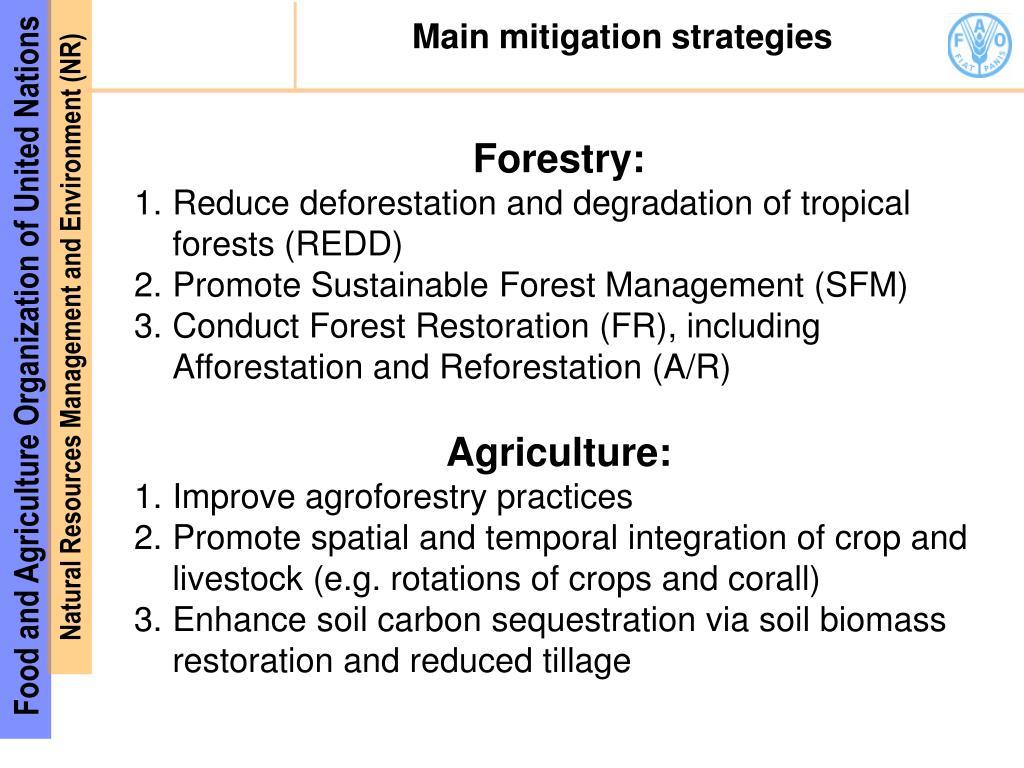 Main mitigation strategies