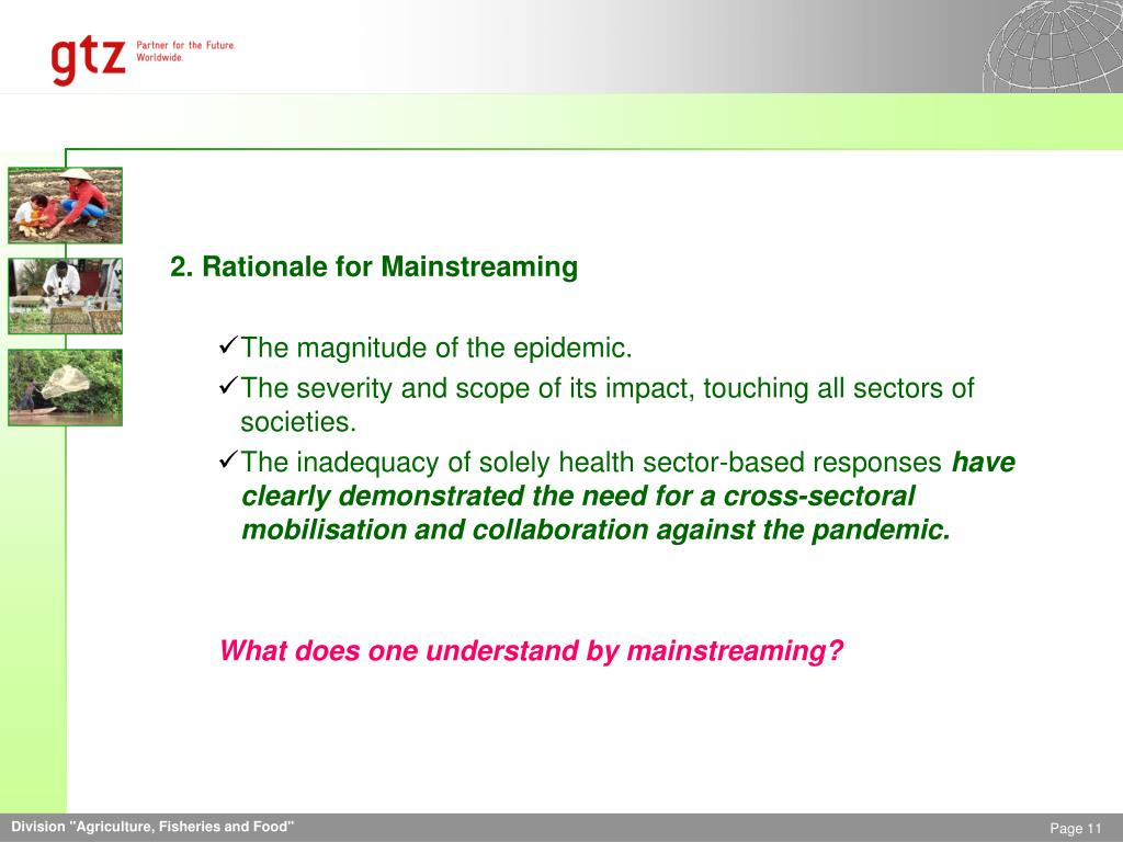 2. Rationale for Mainstreaming