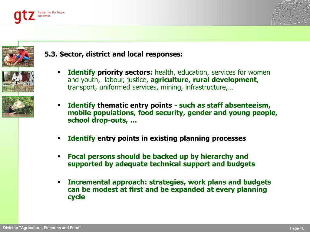 5.3. Sector, district and local responses: