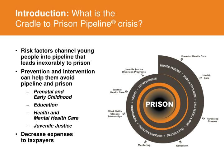 Introduction what is the cradle to prison pipeline crisis