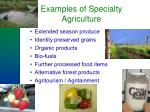 examples of specialty agriculture