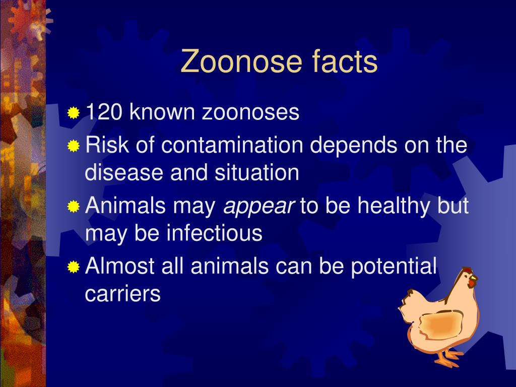 Zoonose facts