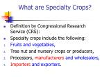 what are specialty crops
