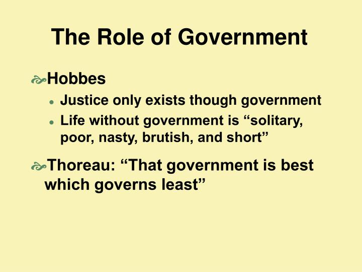the role of government n.