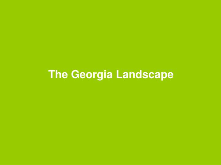 The georgia landscape