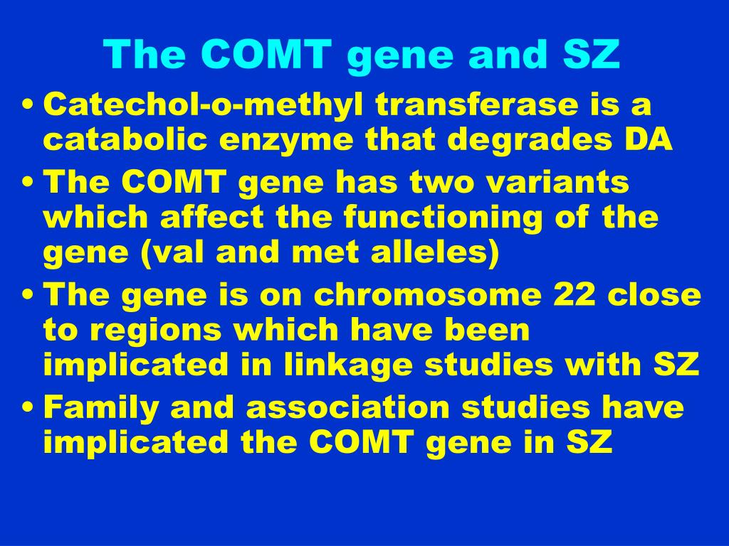The COMT gene and SZ