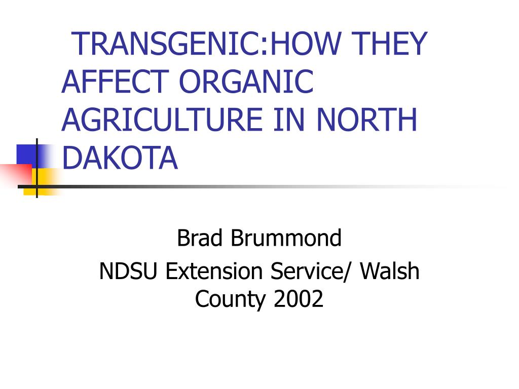 transgenic how they affect organic agriculture in north dakota l.