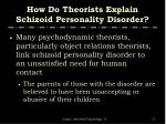 how do theorists explain schizoid personality disorder