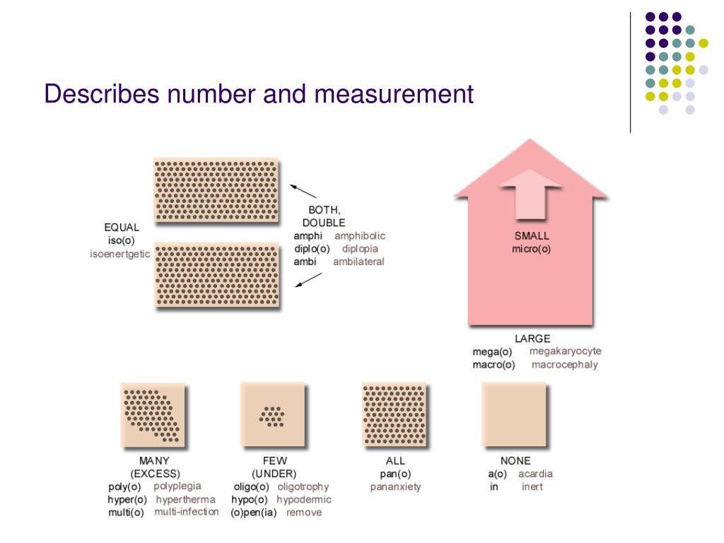 Describes number and measurement