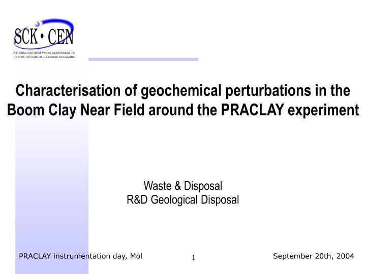 Characterisation of geochemical perturbations in the Boom Clay Near Field around the PRACLAY experim...