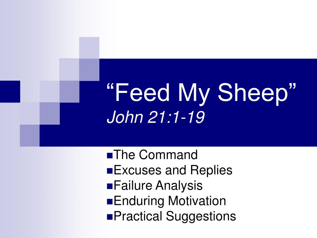 feed my sheep john 21 1 19 l.