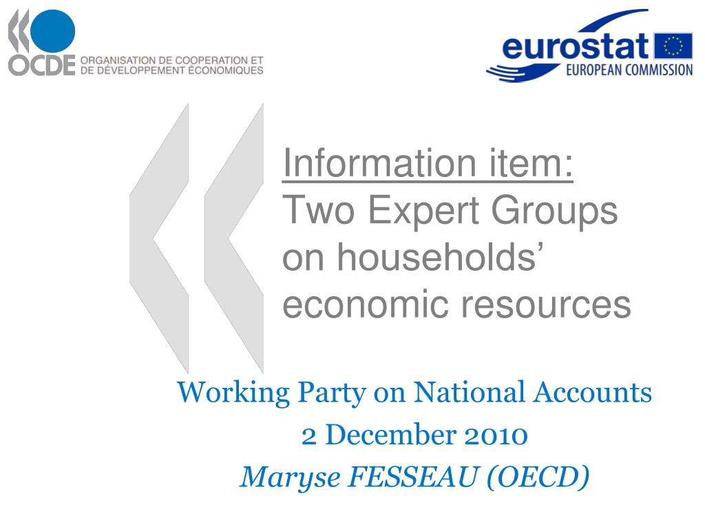 information item two expert groups on households economic resources