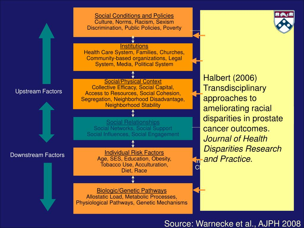 Halbert (2006) Transdisciplinary approaches to ameliorating racial disparities in prostate cancer outcomes.