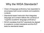 why the wida standards