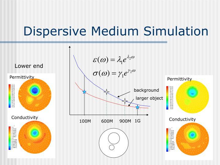 Dispersive Medium Simulation