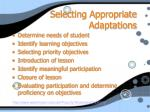 selecting appropriate adaptations