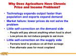 why does agriculture have chronic price and income problems