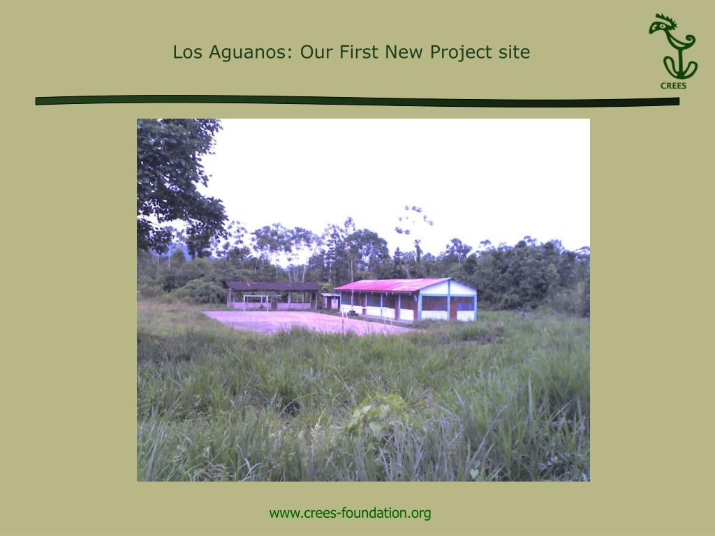 Los Aguanos: Our First New Project site