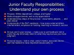 junior faculty responsibilities understand your own process