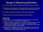 scope of mentoring activities