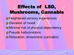 effects of lsd mushrooms cannabis