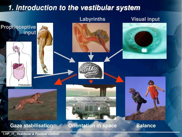 1. Introduction to the vestibular system