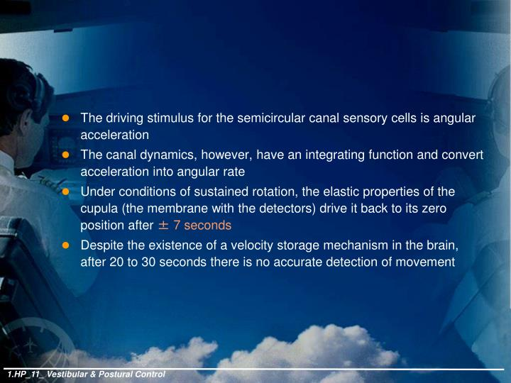 The driving stimulus for the semicircular canal sensory cells is angular acceleration
