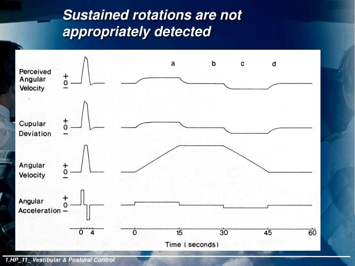 Sustained rotations are not appropriately detected