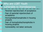 why are lgbt youth vulnerable to homelessness