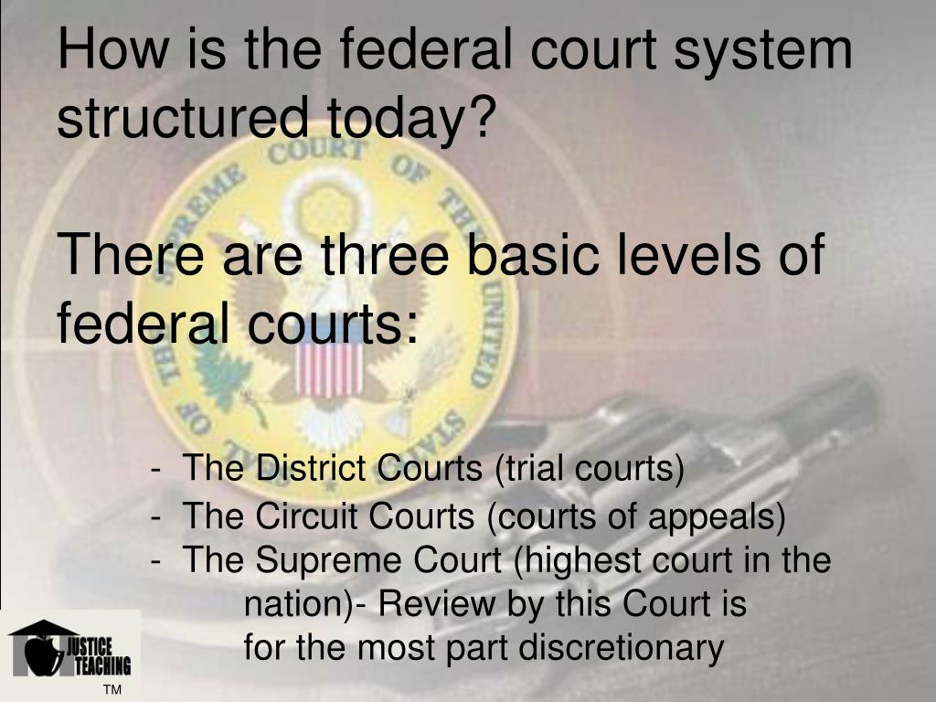 How is the federal court system structured today?