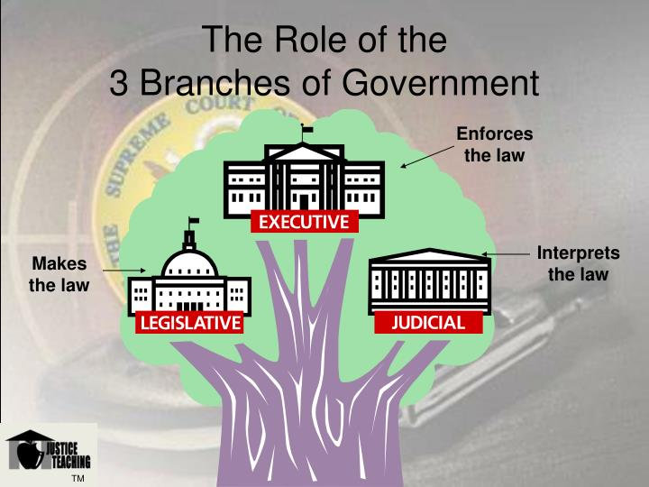 The role of the 3 branches of government