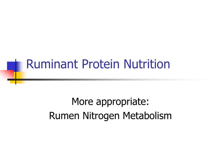 ruminant protein nutrition n.
