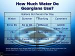 how much water do georgians use