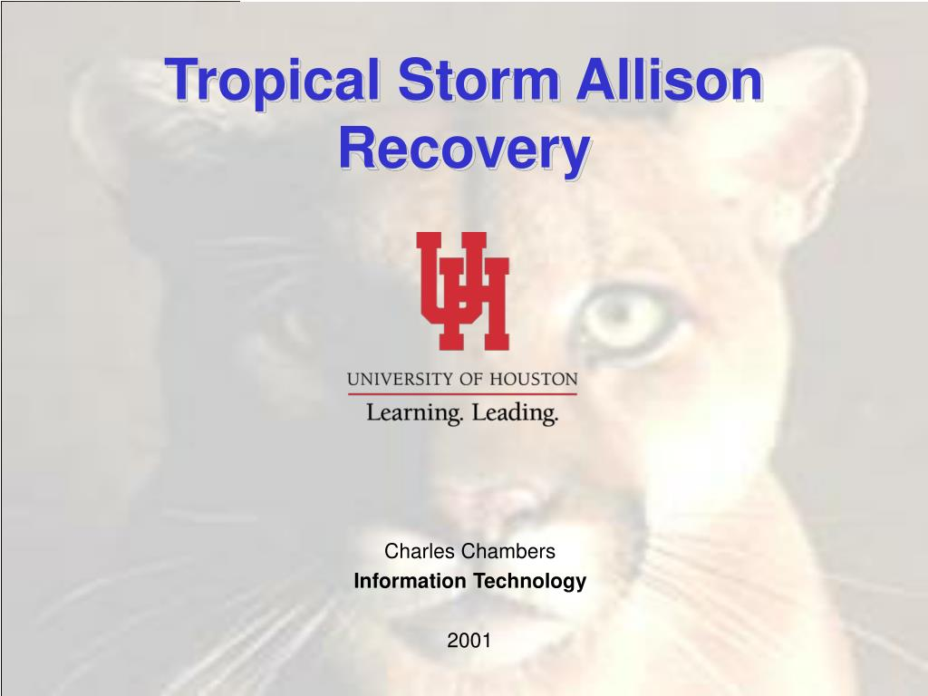 tropical storm allison recovery l.