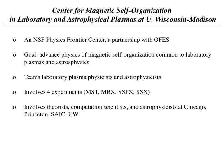 Center for Magnetic Self-Organization