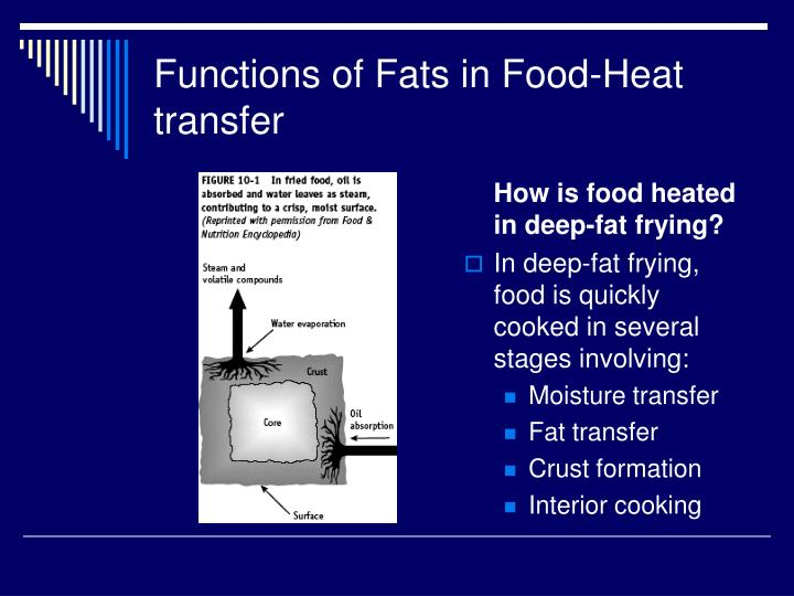 Functions of fats in food heat transfer