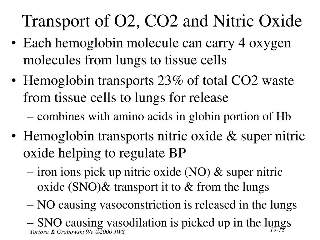 Transport of O2, CO2 and Nitric Oxide