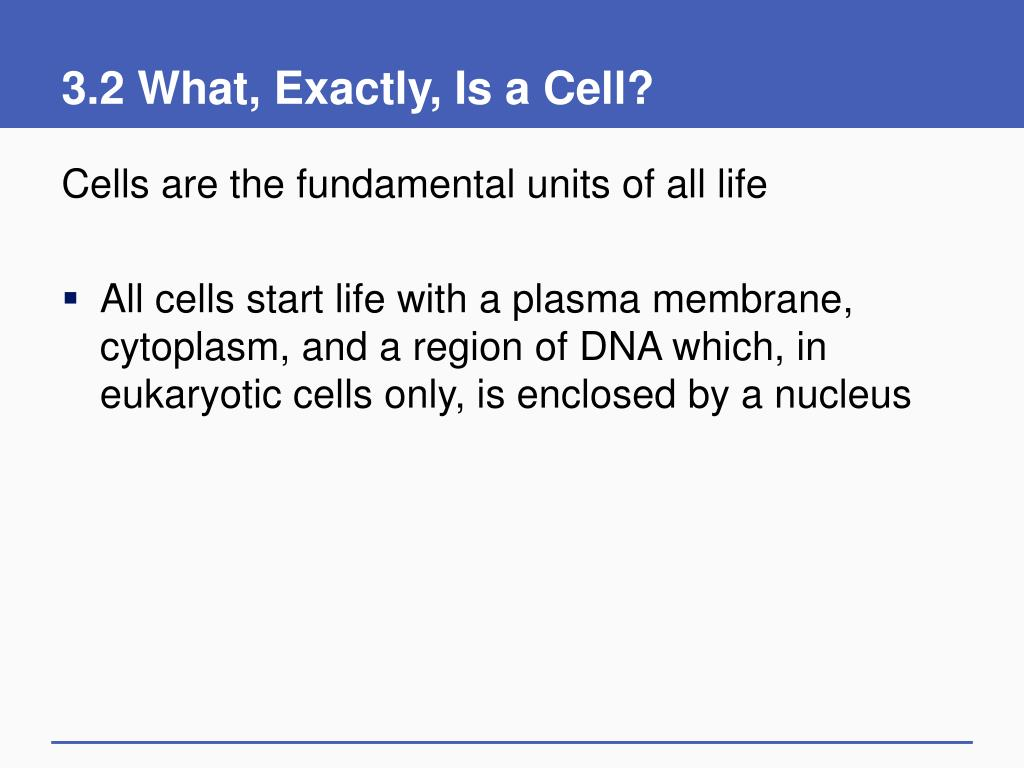 3.2 What, Exactly, Is a Cell?