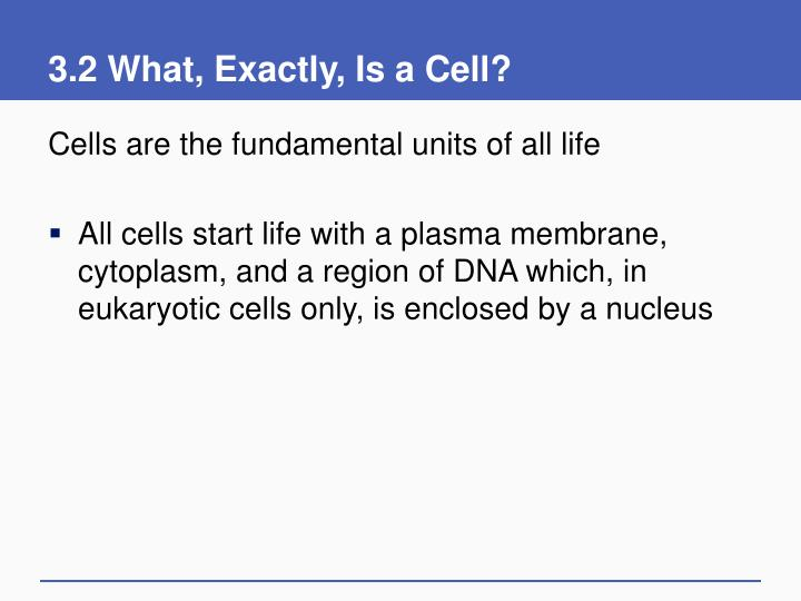 3 2 what exactly is a cell